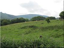 J0717 : A field bordering on Church Hill, Jonesborough by Eric Jones