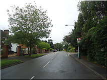 TQ1463 : Milbourne Lane, Esher by Stacey Harris