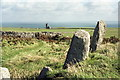 SS1344 : Celtic inscribed stones, Beacon Hill cemetery, Lundy by Rob Noble