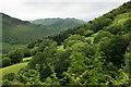 SH6706 : View Across the Ravine, Abergynolwyn, Gwynedd by Peter Trimming