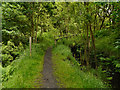 SD9801 : Castle Clough by David Dixon