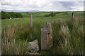 SD5962 : Gatepost near Haylot Farm by Ian Taylor