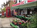 TQ1949 : Brockham Village Shop by Colin Smith