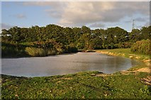 ST1116 : Mid Devon : Pond on Black Down Common by Lewis Clarke
