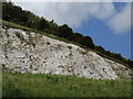 TQ2051 : The White Cliffs of Betchworth by Colin Smith