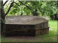 TQ1949 : Pillbox, Brockham by Colin Smith
