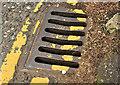 "J2053 : ""County Down Pattern"" grating cover, Dromore by Albert Bridge"