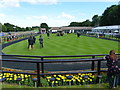 TL6161 : The July Course, Newmarket - Awaiting the winner by Richard Humphrey