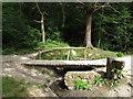 TQ8391 : Footbridge over stream by Roger Jones
