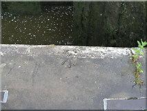 SE1039 : Rivet benchmark on the bottom lock of Bingley Five Rise by John Slater