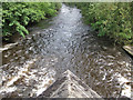 SK2960 : River Derwent, downstream view by Pauline E