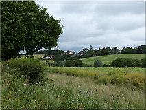 TQ3097 : Oak Avenue from Hog Hill by John Reeves