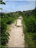 SW3526 : The coast path leading away from the beach car park at Sennen Cove by Rod Allday