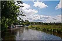 SU9946 : Near Broadford Bridge by Ian Capper