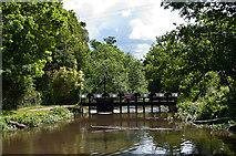 SU9947 : Sluice on River Wey by Ian Capper