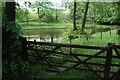 SJ9480 : Fishing pond at Birchencliff by Bill Boaden