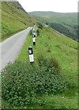SH9124 : Narrow road at Craig yr Ogof by Mat Fascione