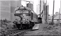N9690 : Shunting at Ardee station by Albert Bridge