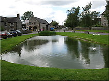 SK1260 : Village duck pond by don cload