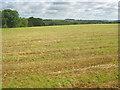 SK8633 : Arable land north of Denton by Trevor Rickard