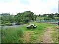 NY7287 : River bank, Falstone by Oliver Dixon