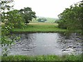 NY7385 : River North Tyne near Smalesmouth by Oliver Dixon