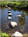 SX6473 : Stepping stones across the Swincombe by Derek Harper