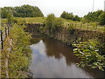 SJ8297 : River Irwell, Wilburn Street Basin by David Dixon