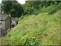 SE0421 : Sowerby Bridge FP135 behind Rough Hey by Humphrey Bolton