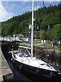 NR8390 : Crinan Canal - Lock No 5 by John M