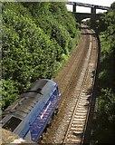 SX9473 : Railway cutting at Teignmouth by Derek Harper