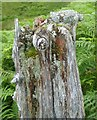 NY4612 : Old Post by Michael Graham