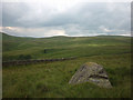 NY5606 : Thunder Stone above Bretherdale by Karl and Ali