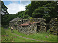 NY5705 : Ruin and decay at Bretherdale Head by Karl and Ali