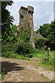 R4401 : Castles of Munster: Castle Magner, Cork (1) by Mike Searle
