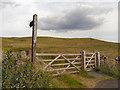 SD6619 : Darwen Moor, Witton Weavers Way by David Dixon