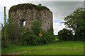 X0374 : Castles of Munster: Inchiquin, Cork by Mike Searle