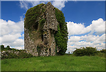 S2653 : Castles of Munster: Mellison, Tipperary (1) by Mike Searle