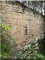 NJ1763 : Rosebrae Quarry by Anne Burgess