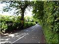 TQ3954 : Woldingham:  The Ridge by Dr Neil Clifton