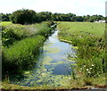 ST3862 : Drainage channel near Weston-super-Mare by Jaggery