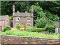 SJ6703 : Lady Wood Cottage, Ladywood by Christine Johnstone