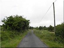 H5015 : Minor road at Ronard by Kenneth  Allen