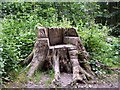 TQ3209 : Unusual Seat in Pudding Bag Wood by Paul Gillett