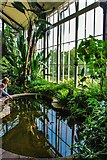 SK0573 : Buxton Pavilion Tropical Gardens by Mr Eugene Birchall