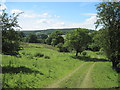 SE5490 : Track  alongside  Stordom  Wood by Martin Dawes