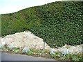 SE3439 : Flowerbeds on the east side of Gateland Lane by Christine Johnstone
