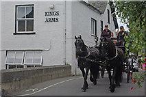 SD3778 : Black horses in Cartmel by Stephen McKay