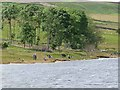 NZ0251 : Anglers on the Derwent Reservoir by Oliver Dixon