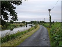 N4527 : Grand Canal in Townparks, near Daingean, Co. Offaly by JP